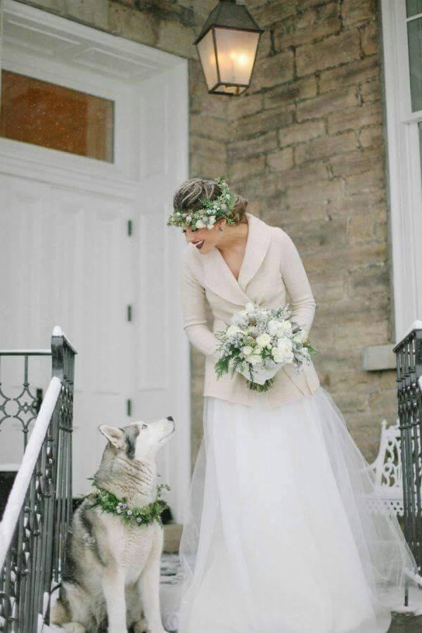 Wedding Broker dog10