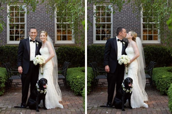 Wedding Broker dog24
