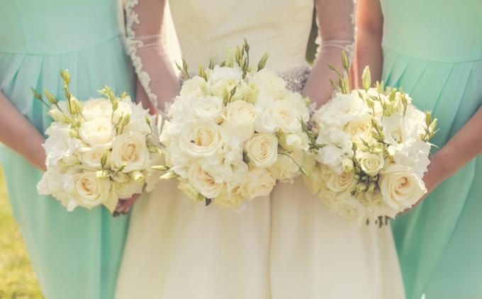 Wedding Broker guia damas 8